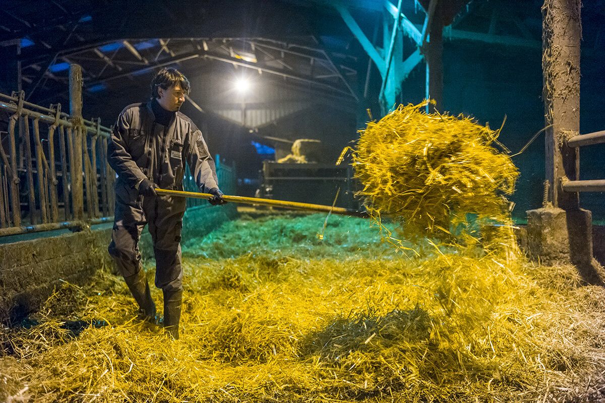 Mickael Poillion, agriculteur éleveur à Héricourt © Olivier Touron / Divergence