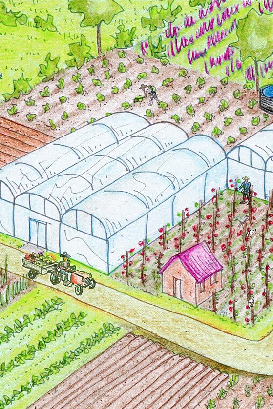 Notre équipe : réconcilier production agricole et respect du vivant